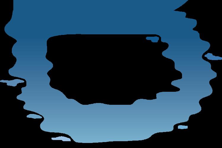 logo_blue_swim
